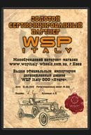 ������� ����������������� ������� WSP Italy